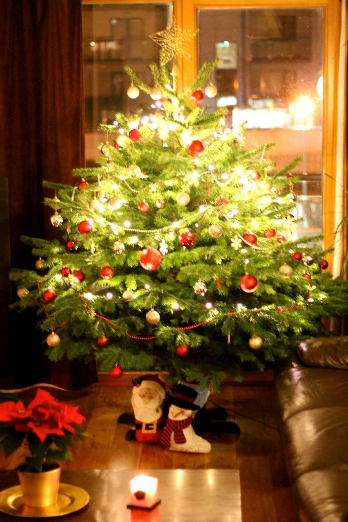 Christmas Tree YourBeauty.ie